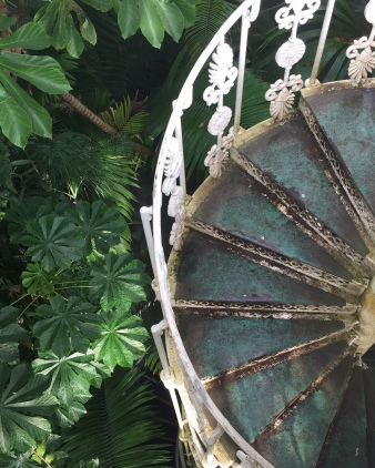 Staircase in the Palm House