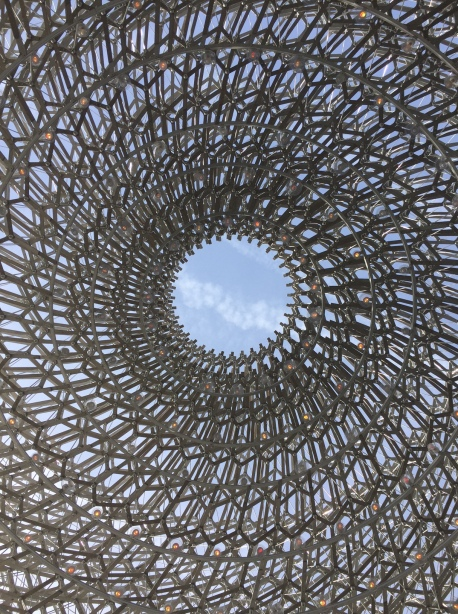 The Hive at Kew Gardens, from inside looking up