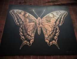 AMT.18.07.001. Swallowtail butterfly. Etched copper plate