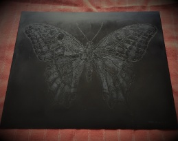 AMT.18.07.001. Swallowtail butterfly. Oxidised copper plate